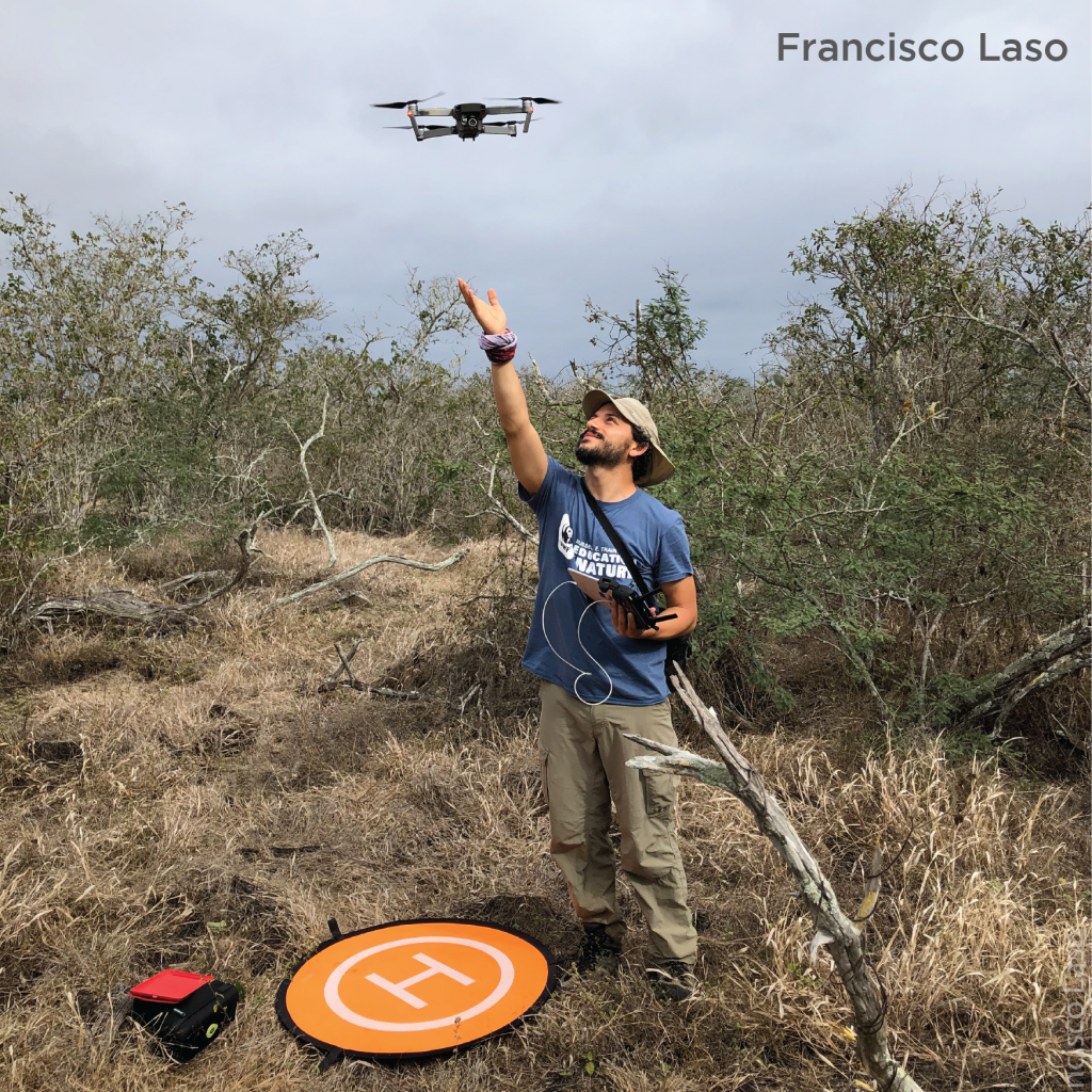 A student stands right under a drone after launching it in a clearing with low trees and brush.